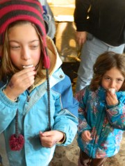 For visitors Abby and Charlotte, a taste of maple syrup produced at Comte Farm.