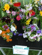 Lovely bouquets of flowers also from Cugno's Farm.