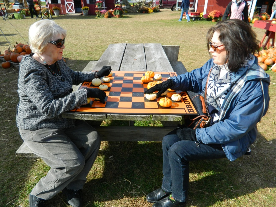 Photo by Jacqueline Bennett Pumpkin checkers at Brown's Harvest 10/2013
