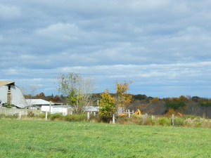 Farmland in rural Coventry, Conn. - photo by JB.