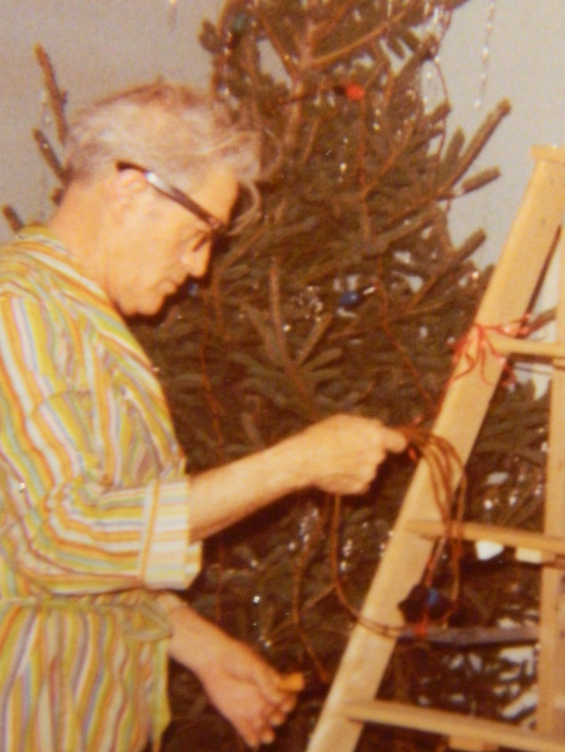 A Father\'s Dedication – Dad in the Car Trunk with the Christmas Tree ...