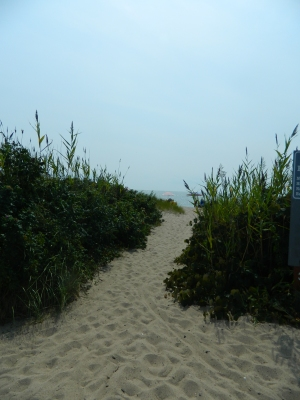 Photo by Jacqueline Bennett Welcome to Hammonasset's East Beach.