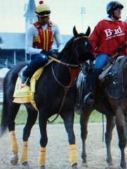 From DRF.com Danzing Candy.