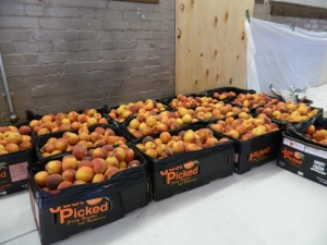 New Jersey peached saved the day.