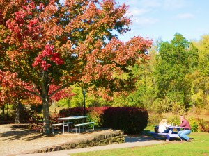 Bart's which sits on the banks of the Farmington River provided a colorful lunch stop on this crisp autumn day.