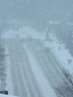 View of Hale Road in Manchester, CT around 11:30 a.m. on Sunday.