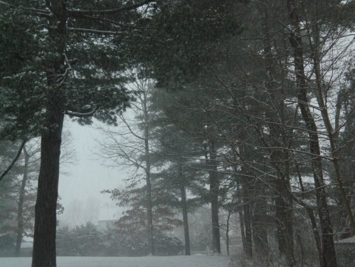 By 7:00 a.m the sky remained misty and rapid snowfall was accumulating.