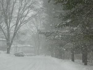 Navigating driveways.